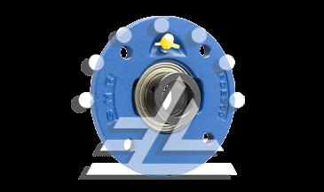 ESFCE212